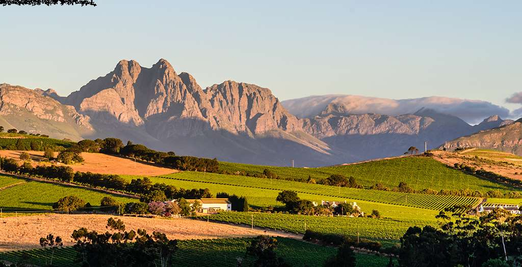 Visit the scenic winelands