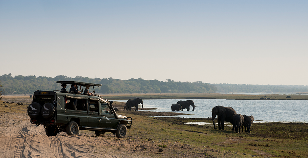 Spot wildlife on your transfer to the camp