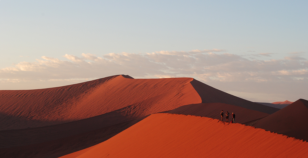 See Namibia's famous sea of dunes
