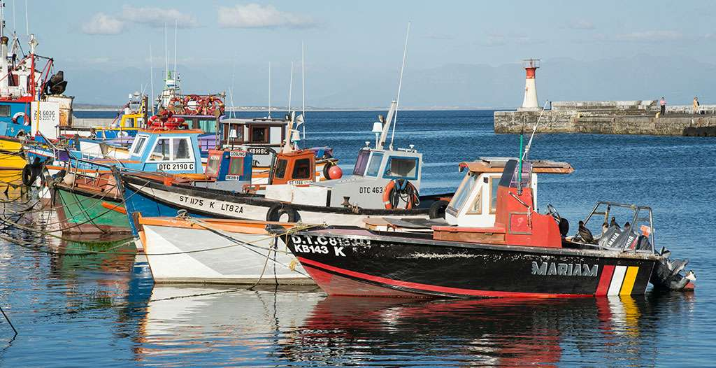 Tour fishing villages on the coast