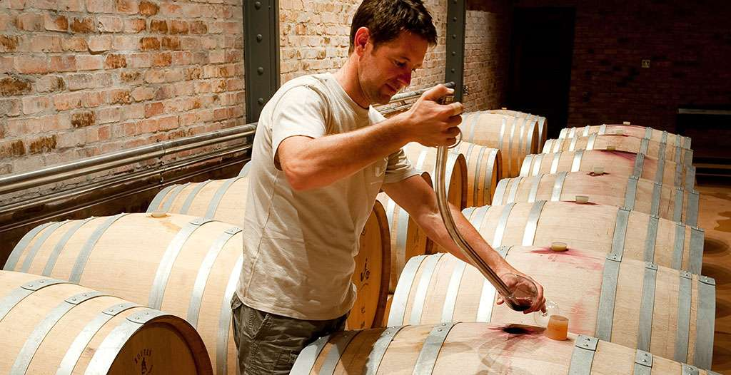 Go on a winery tour