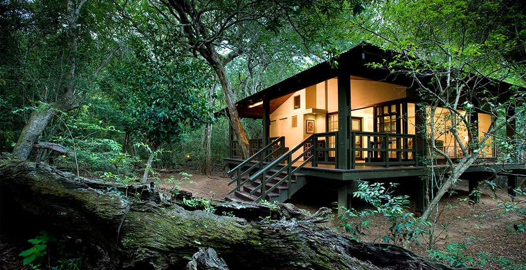 Suites offer privacy surrounded by nature