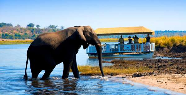 Beautiful Botswana Mobile Safari